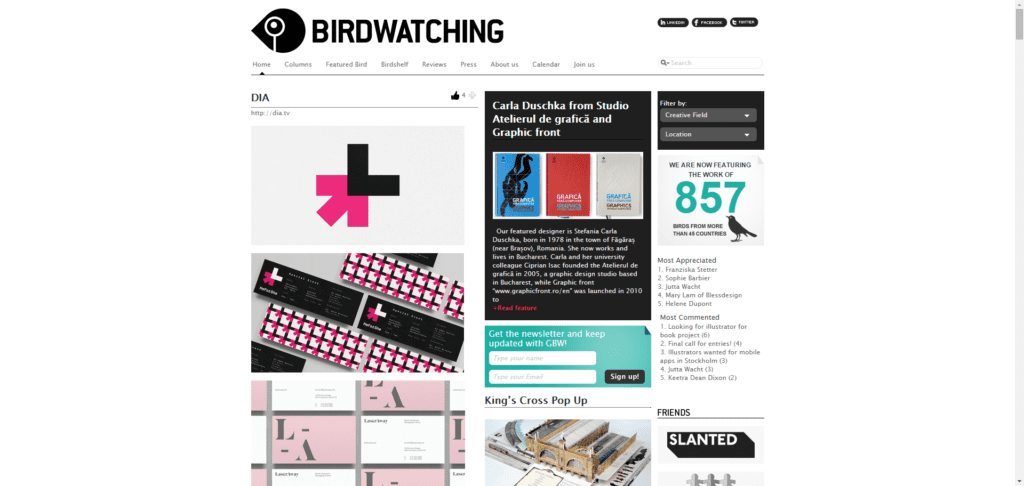 graphicbirdwatching