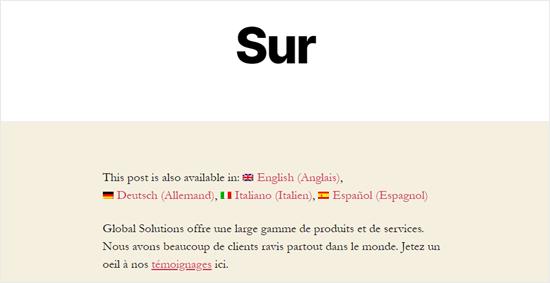 Fransızca'ya çevrilmiş Hakkında sayfası