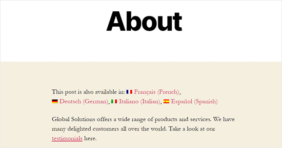 Demo sitemizdeki Çeviri dili seçeneklerinin gösterildiği Hakkında sayfası