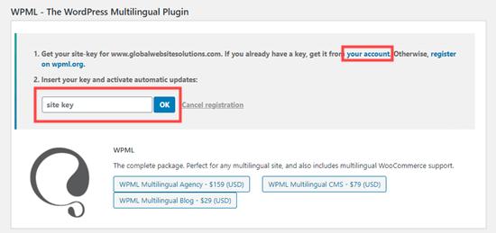 WPML için site anahtarını girme